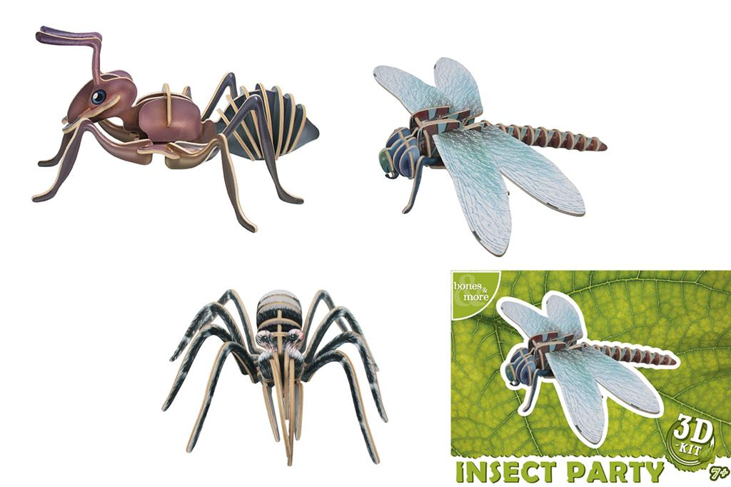 Maquette Medium Insectes (Bones&More 3D-Kit)